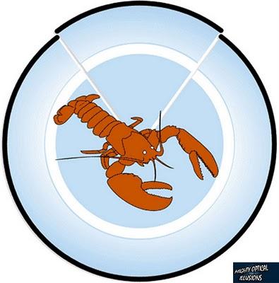 braingames_lobster_moilogo_590x598