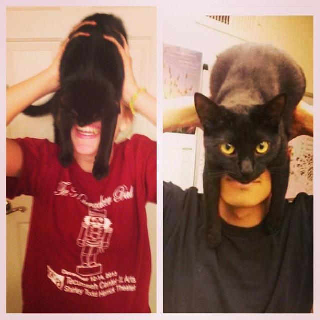 catman_03