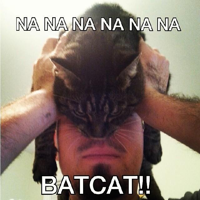 catman_06