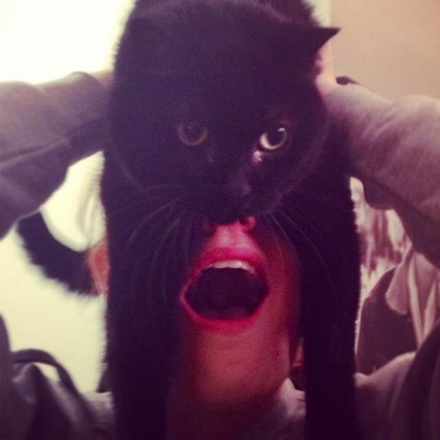 catman_07