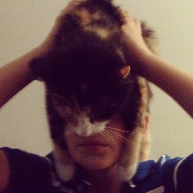 catman_08