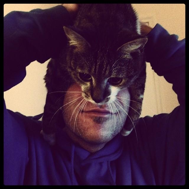 catman_17