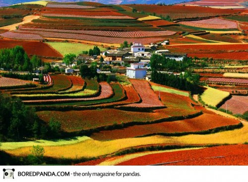 40-breathtaking-landscapes-will-force-you-to-move-to-china-9__605