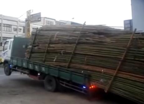truckbamboo