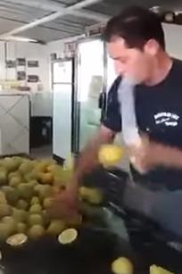 lemonninja