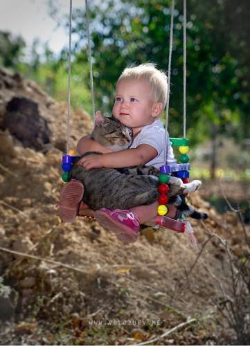 animalcat