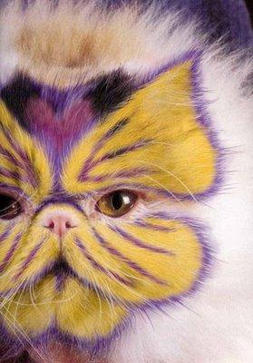 cat_makeup (10)