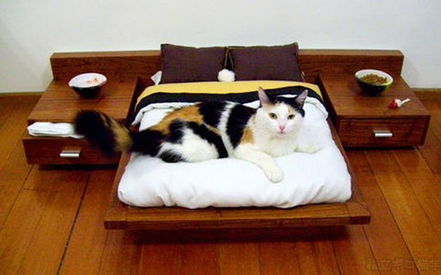 catbed7