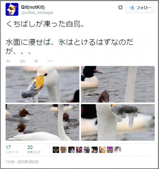 flozen_hakucho1