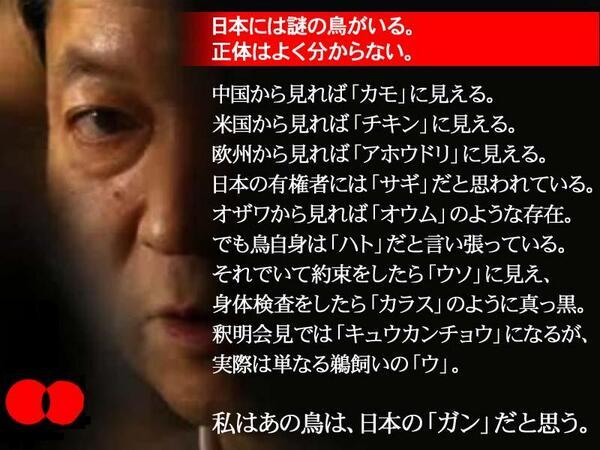 hatoyama_poppo (1)
