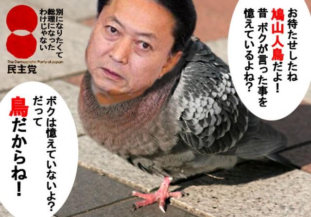 hatoyama_poppo (2)