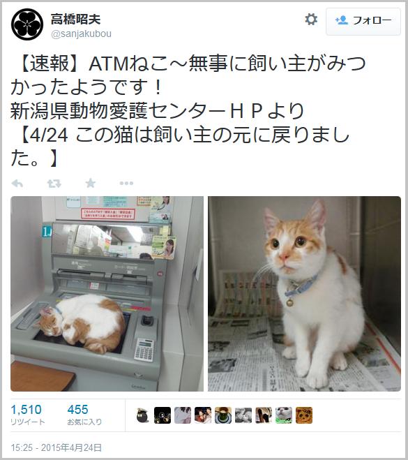 ATMcat