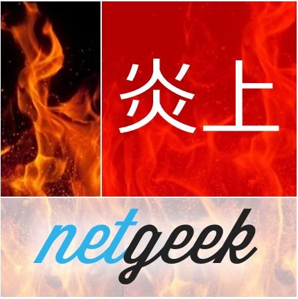 netgeek_enjo5