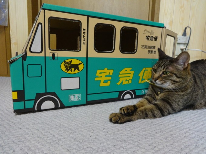 kuronekoyamato_box (1)