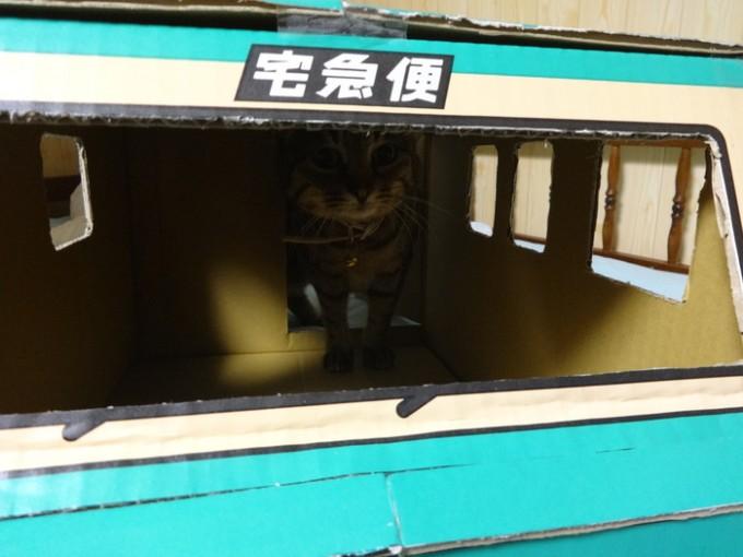 kuronekoyamato_box (13)