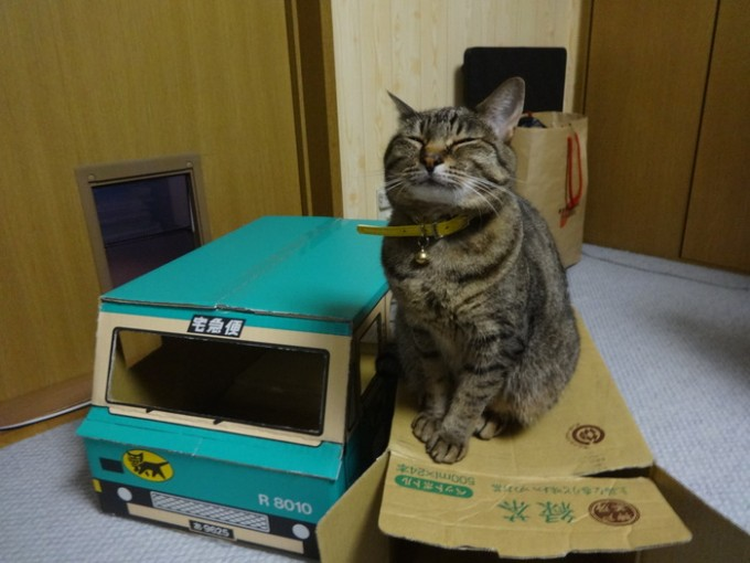 kuronekoyamato_box (3)