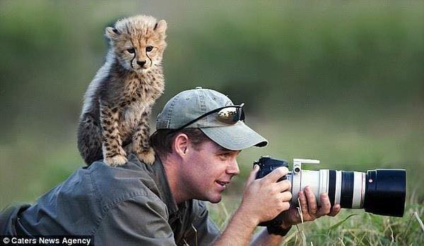 cameraman_animal (6)