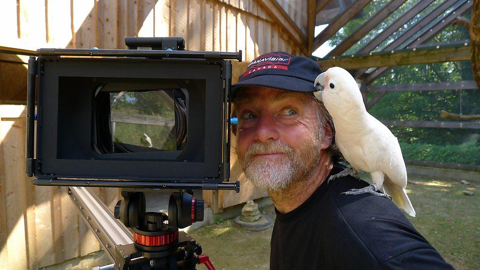 cameraman_animal (7)