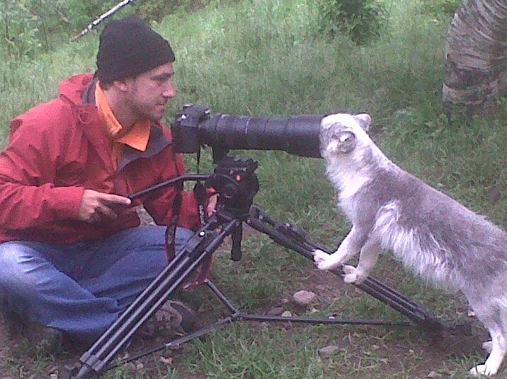cameraman_animal (9)