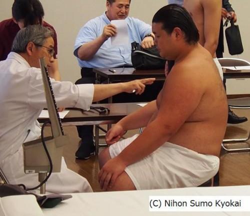sumo5_2
