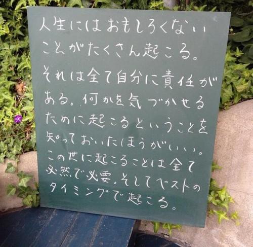 meigen_board (9)