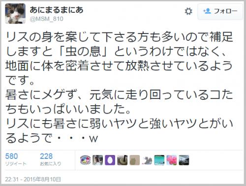 risu_becool (1)