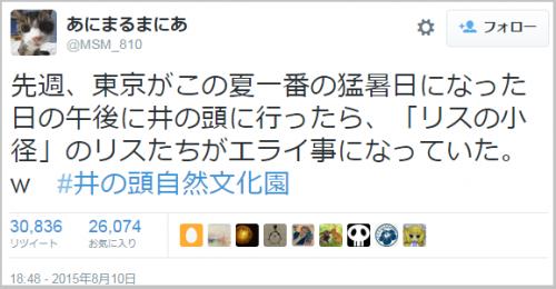 risu_becool (2)