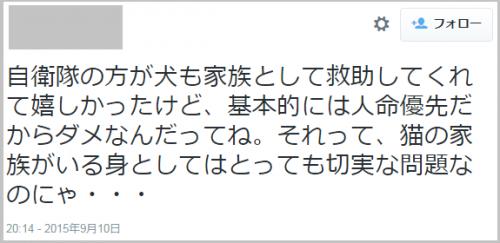 jieitai_dog_kinugawa6