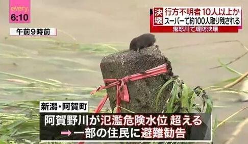 kinugawa_animal (1)
