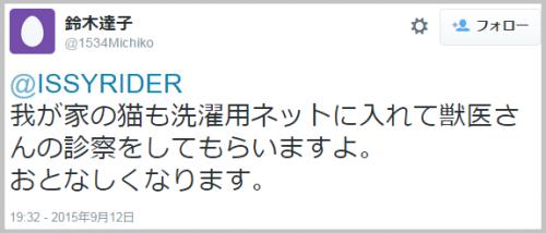 kinugawa_cat6
