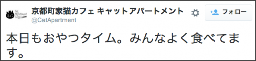 1024kyoto_cat1