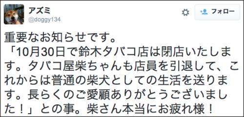 1104suzuki_shiba10