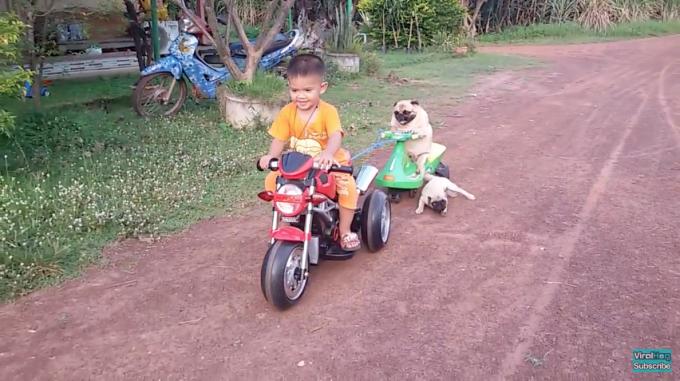 1106pug_motorcycle3