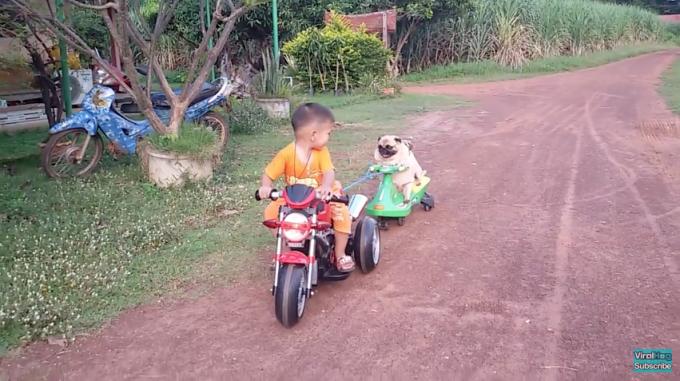 1106pug_motorcycle4