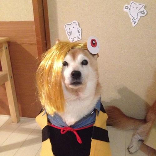 1204youkai_dog7
