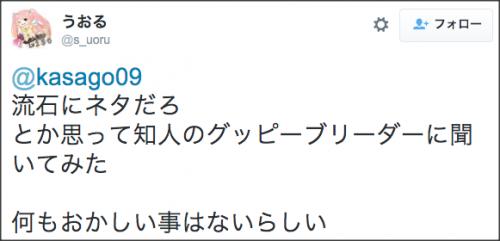 1218tansu_suisou3