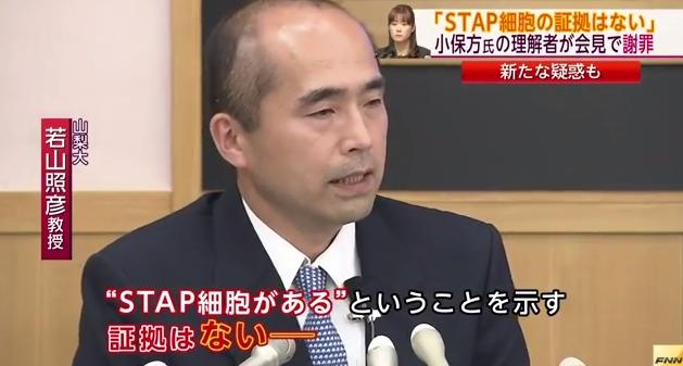 obokata_wakayama