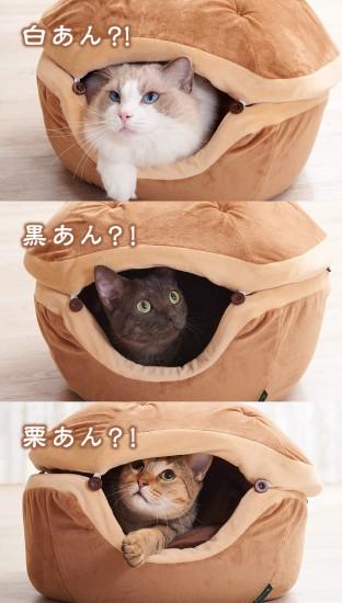 dorayaki_cat9
