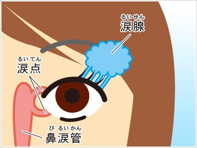 megusuri_megashira (3)