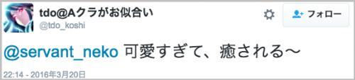 curry_neko46