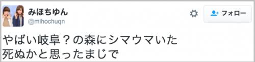 dassou_shimauma5