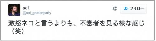 gekioko_neko
