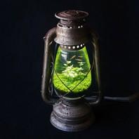 lamp_watertank01