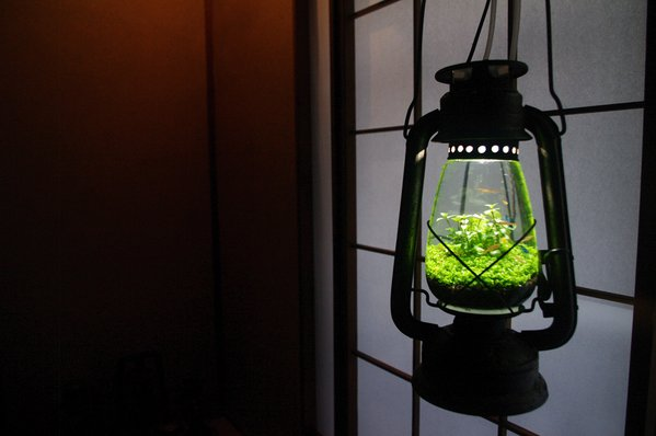lamp_watertank2