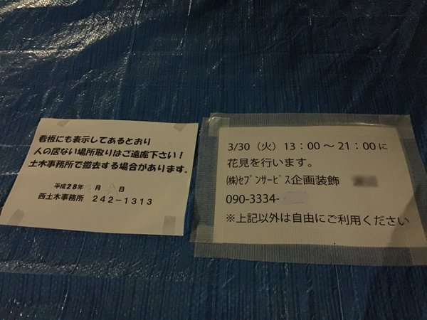 nikki_hanami (1)