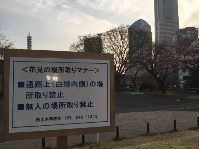 nikki_hanami (3)