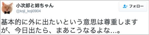 amenohi_neko6