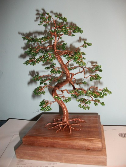 bonsai_unique (11)