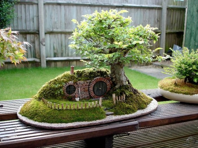 bonsai_unique (2)
