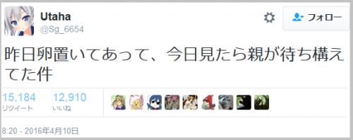 hatojitensha5